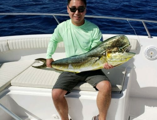 Mahi Action with Ryan and Marc